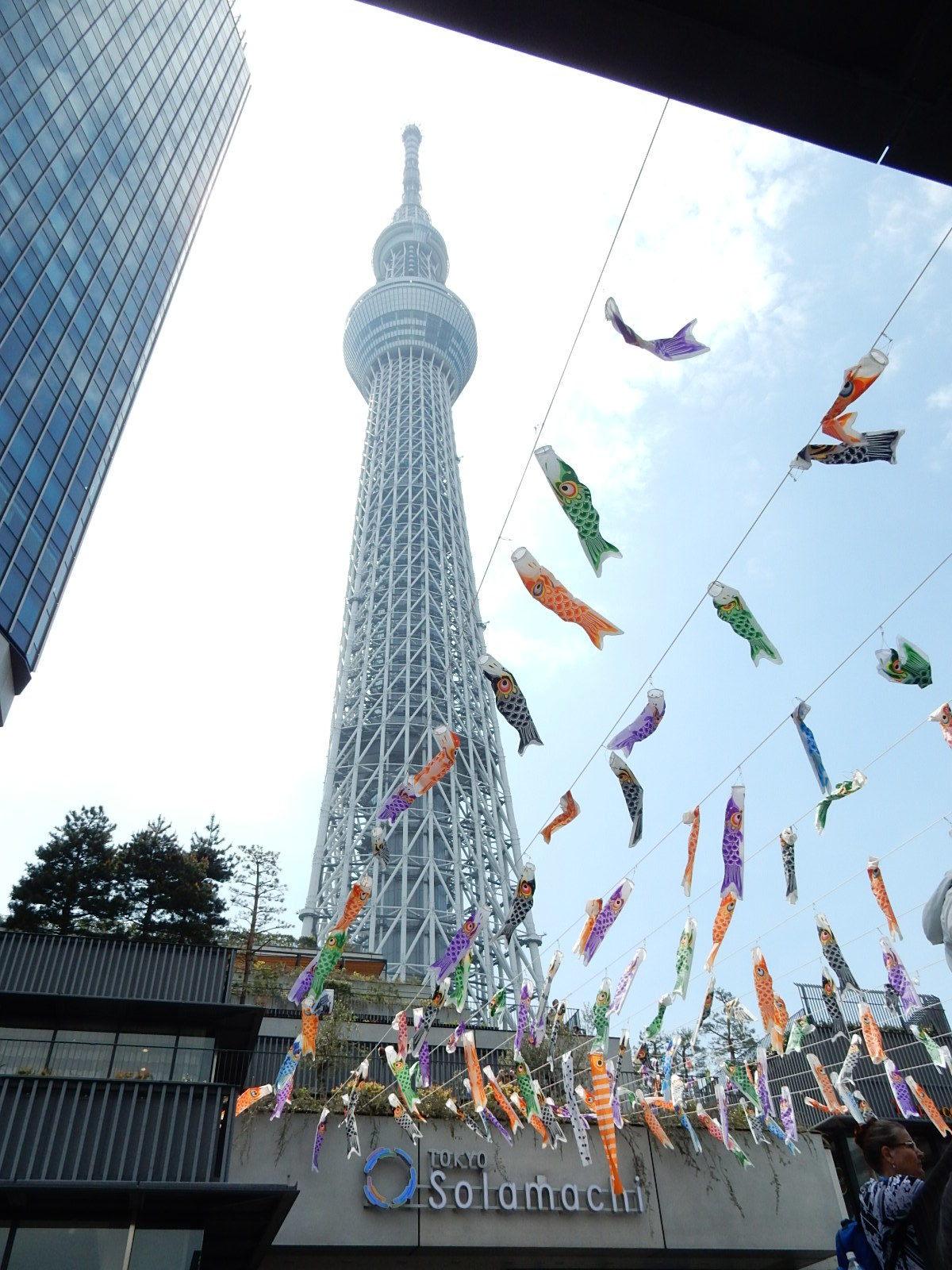 東京スカイツリーと鯉幟