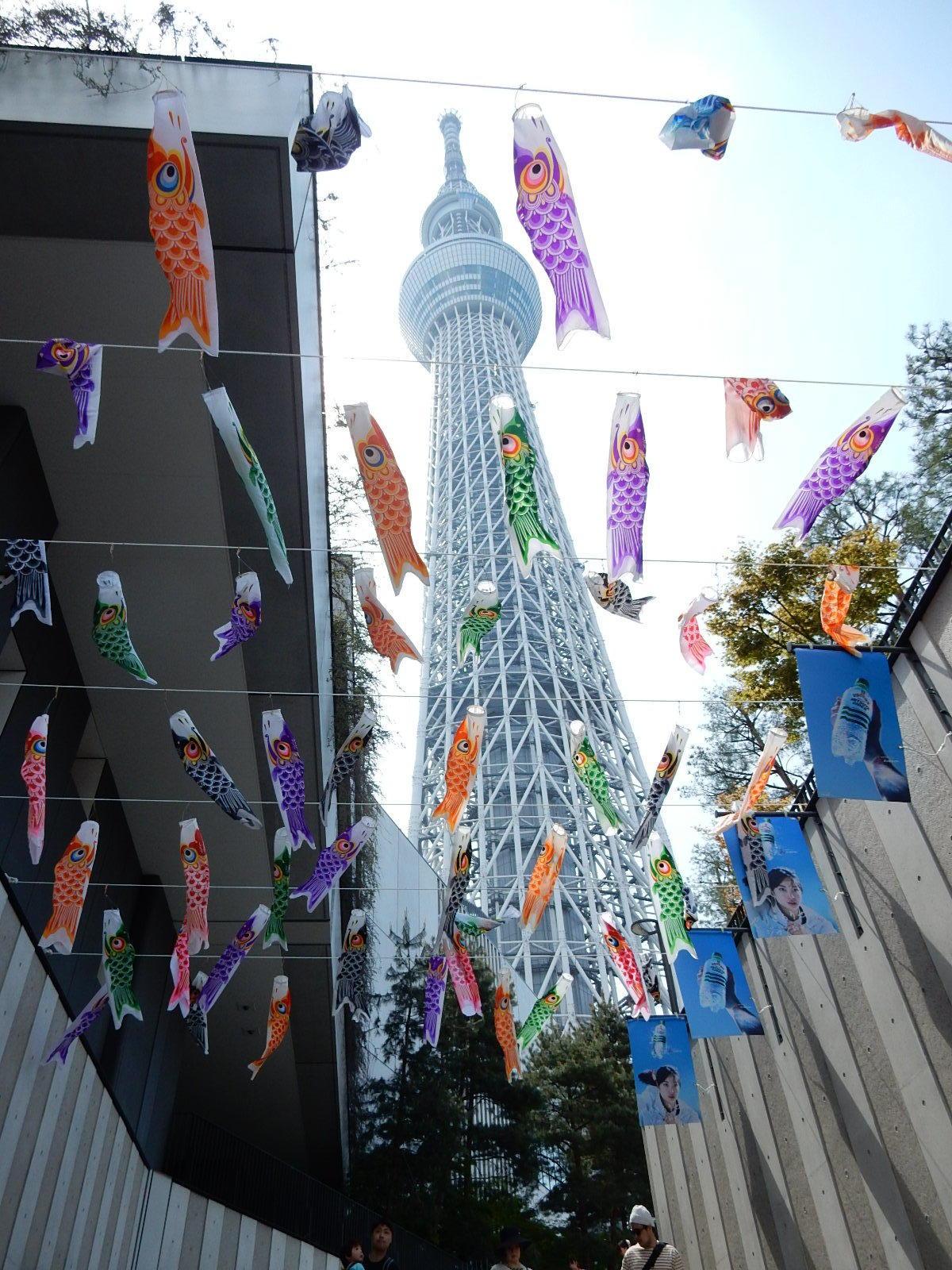 階段の途中からの東京スカイツリーと鯉幟
