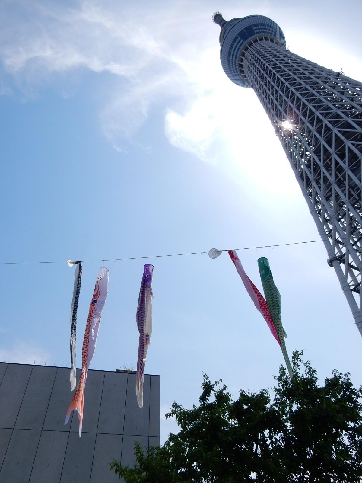 東京スカイツリーと鯉幟2