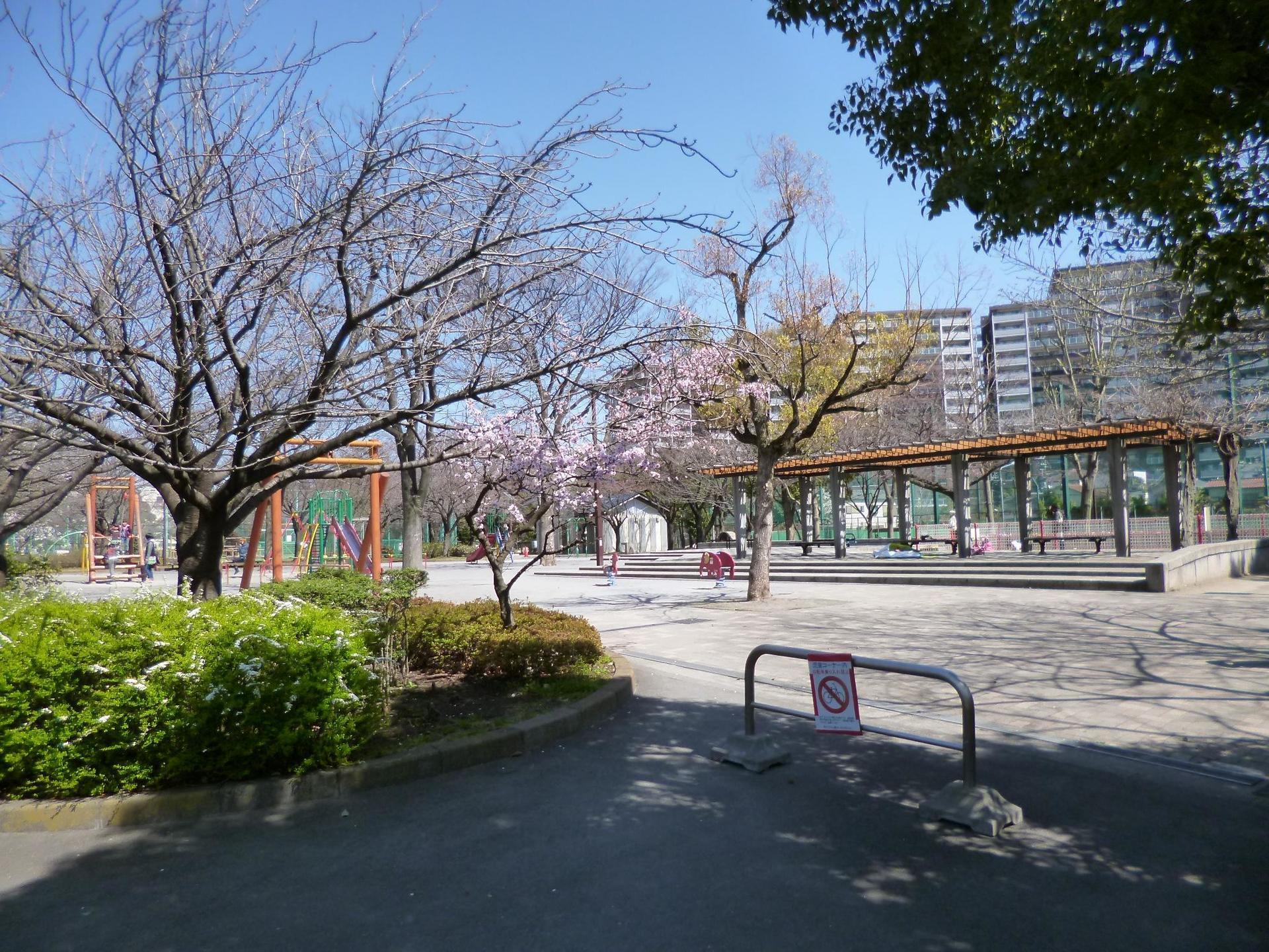 C地区の公園