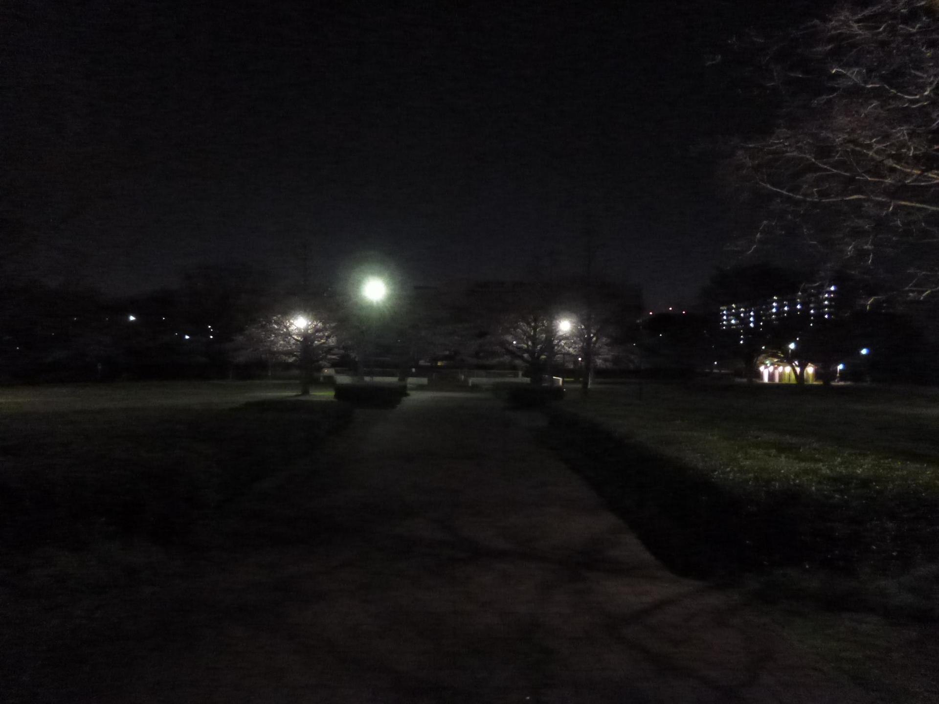 夜の亀戸中央公園B地区の東屋方向