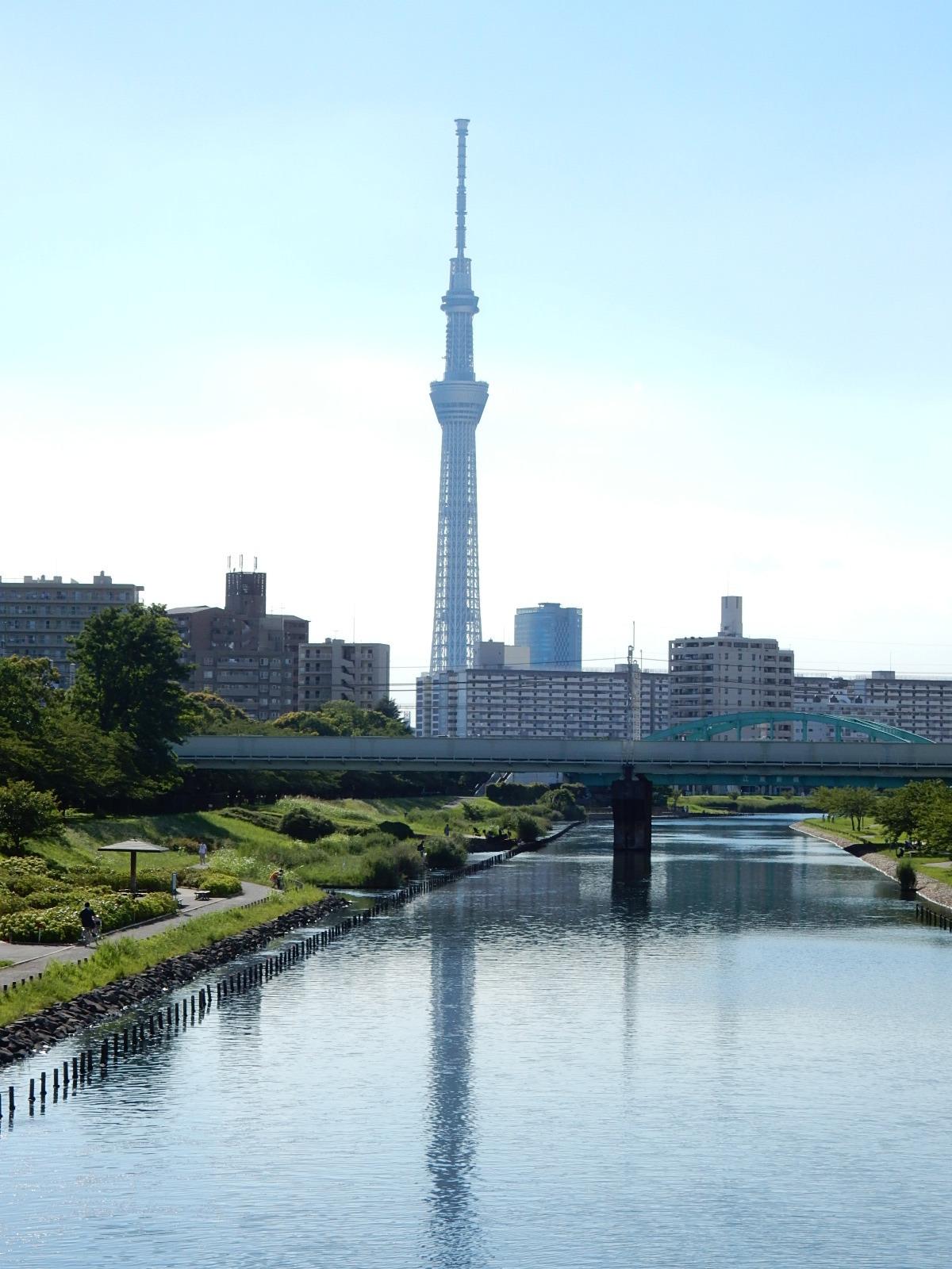 真夏の東京スカイツリー