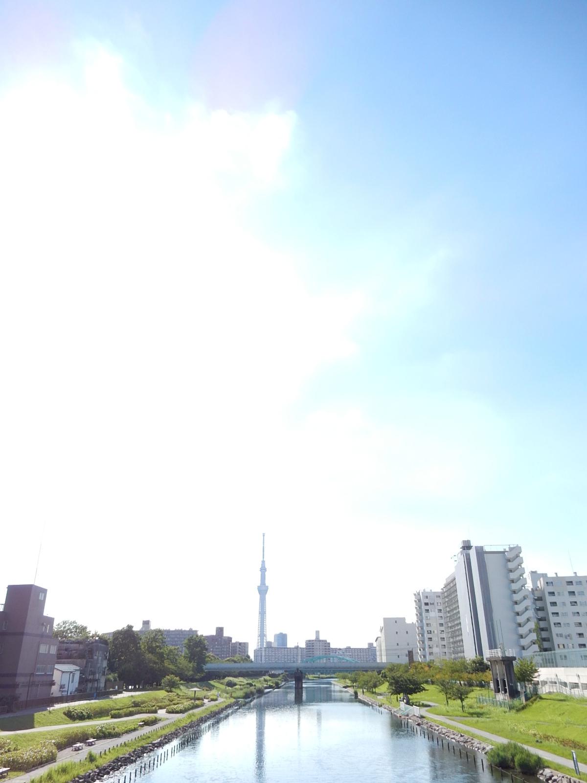 真夏の空と東京スカイツリー