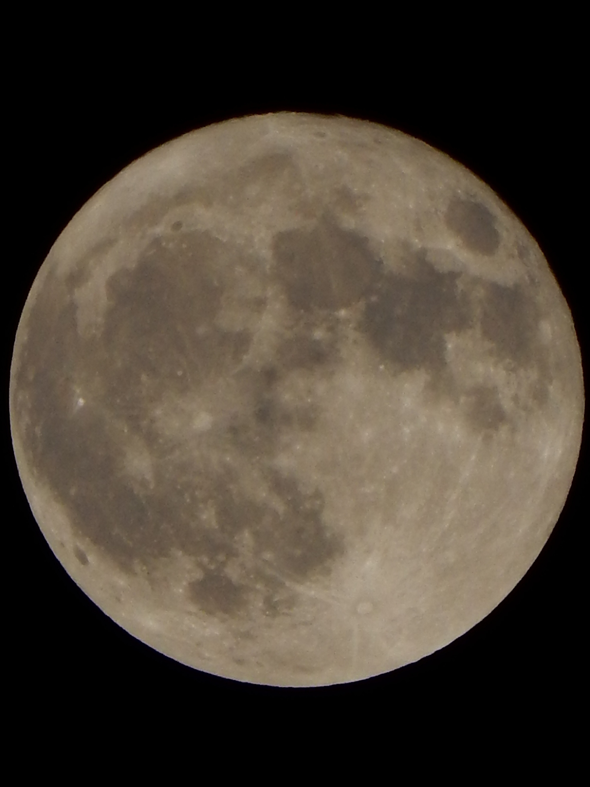 満月の本日1