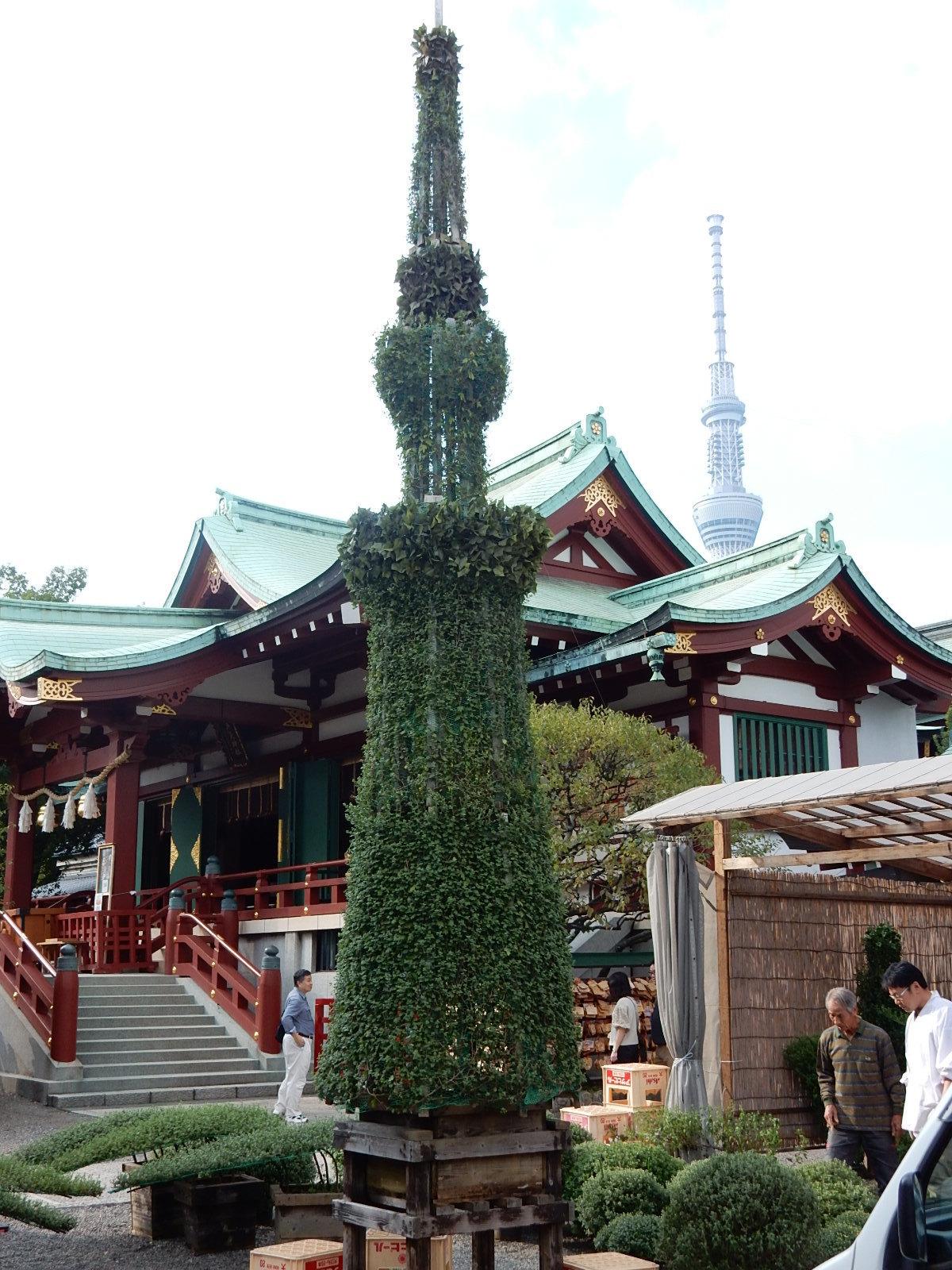 菊まつりの東京スカイツリー