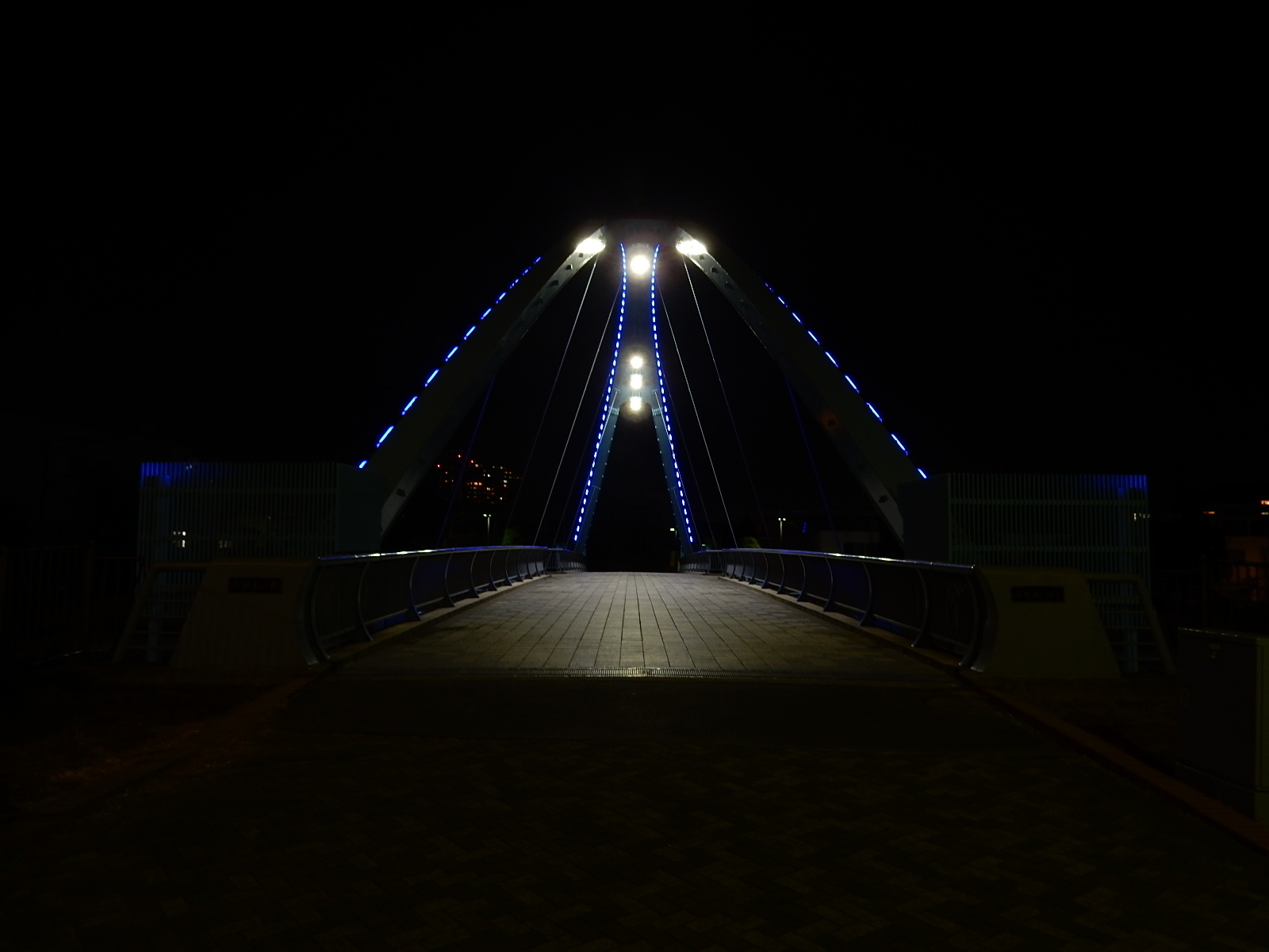 真夜中の照明を灯したふれあい橋3