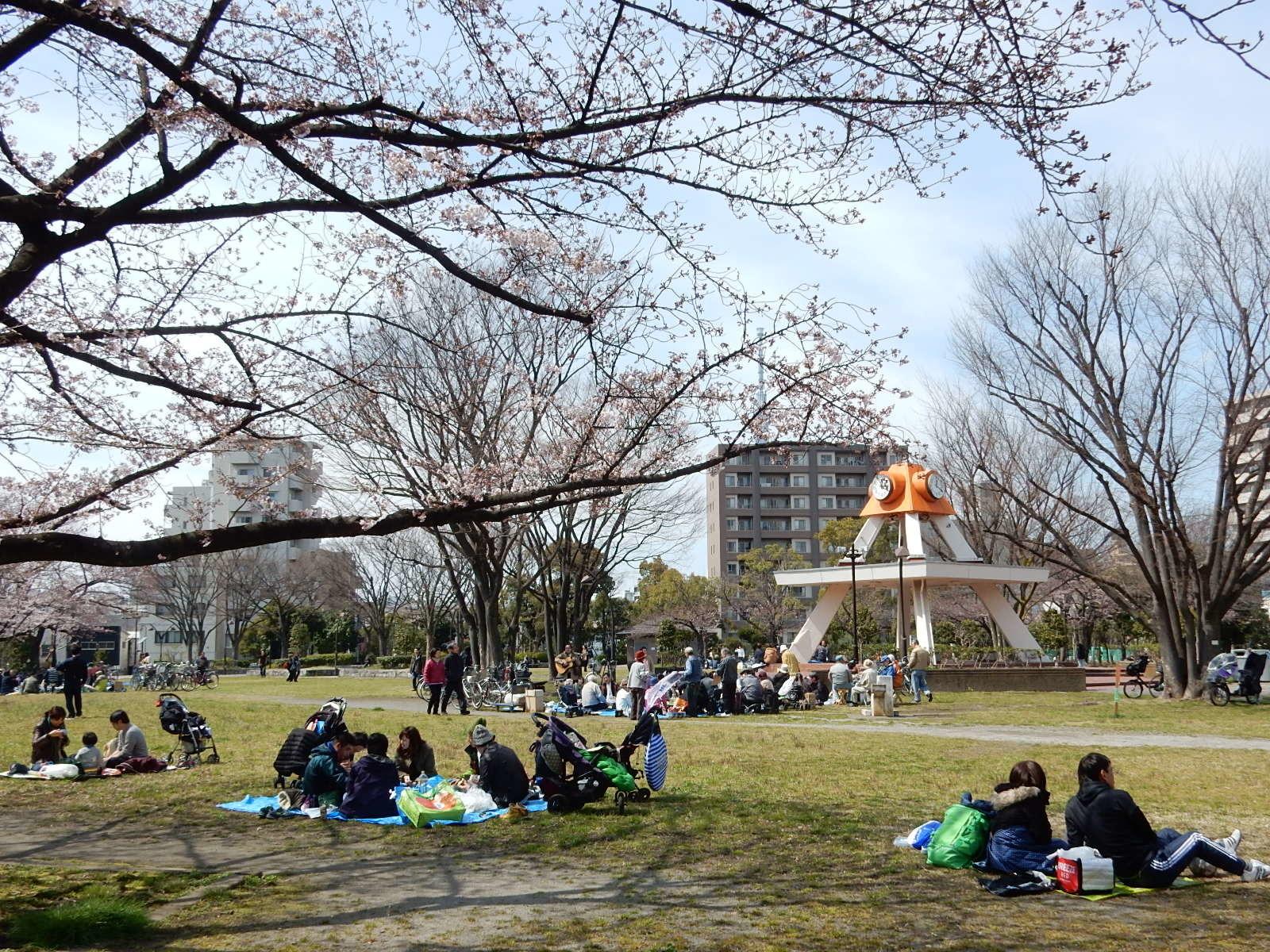 亀戸中央公園A地区で花見をする人々