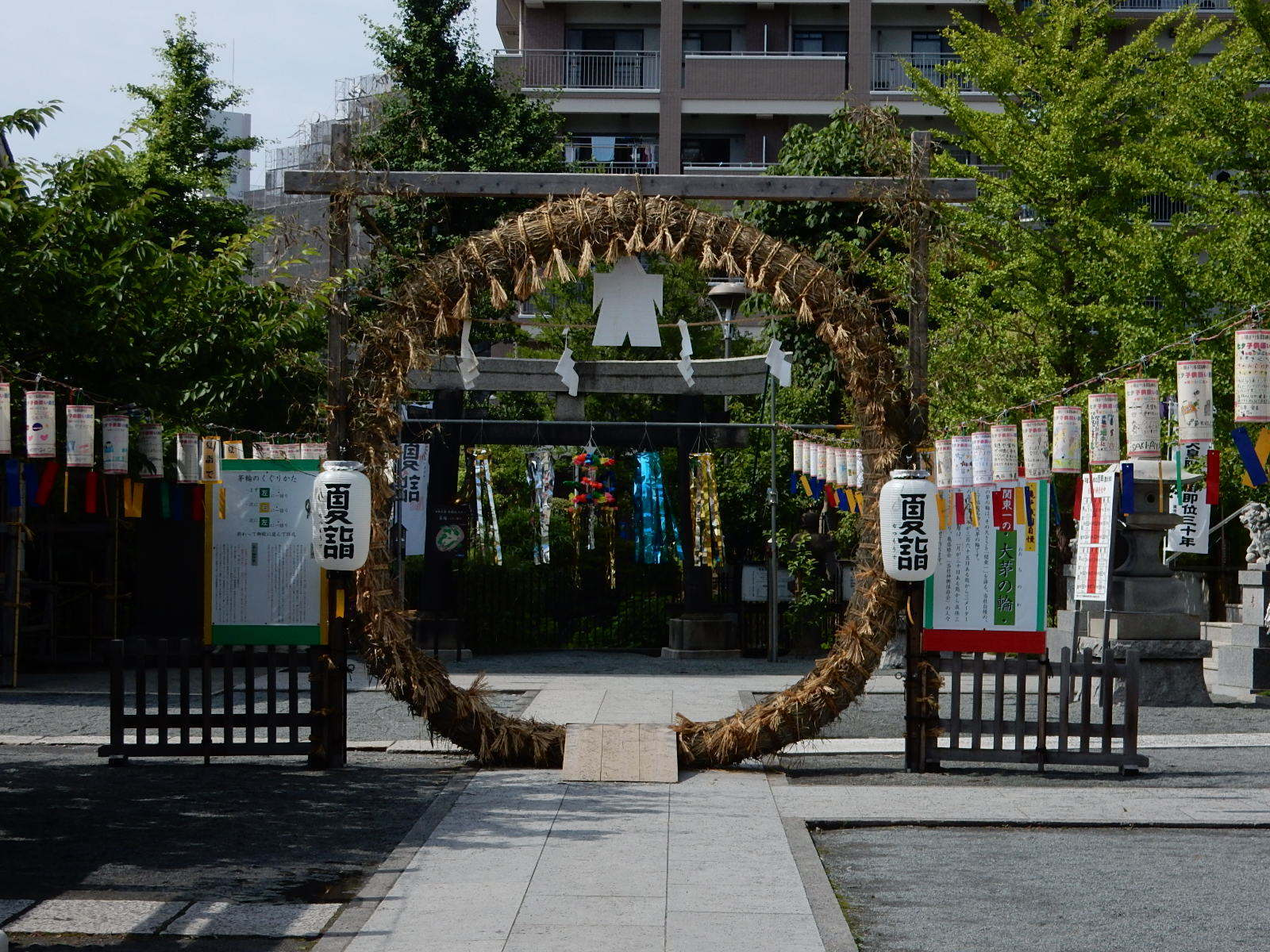 浅間神社の茅の輪2